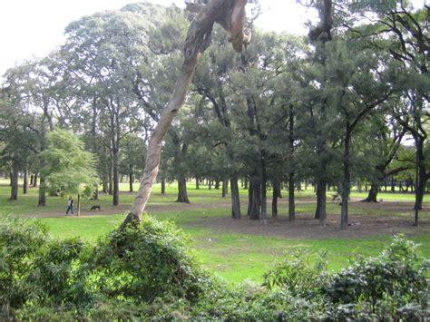 imagenes 3d bosques archivo bosques palermo jpg wikipedia la enciclopedia libre