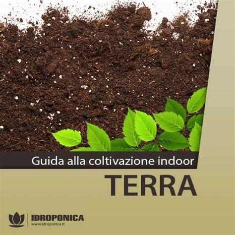lade per mariuana coltivare indoor con lade per coltivazione indoor lade