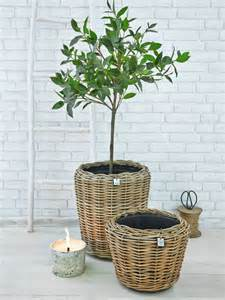 large rattan planters nordic house