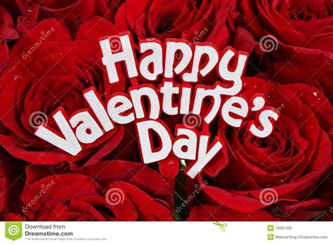 Valentines Day Roses That Speak To You by Valentines Day Roses Stock Image Image Of