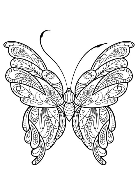 beautiful coloring pages of butterflies butterfly beautiful patterns 16 butterflies insects