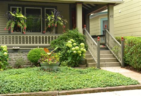 groundcovers are important in grassless front backyards buffalo niagaragardening com