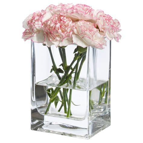 Rektangel Vase by Rektangel Vase Clear Glass 14 Cm Ikea