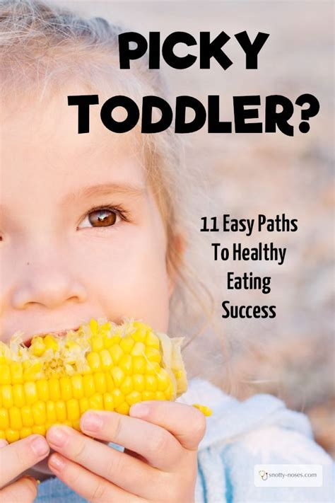 my child wont eat 1780660057 help my toddler won t eat 11 simple ways to help