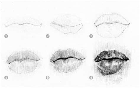 imagenes de narises a lapiz nariz para dibujar a lapiz imagui