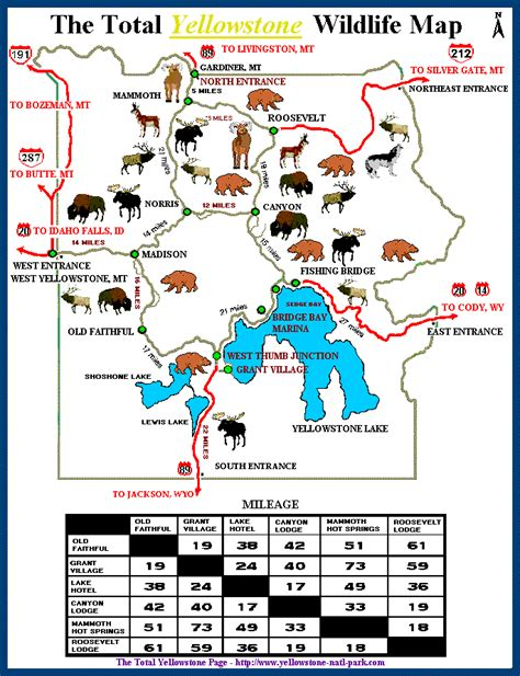 map grand cgrounds the total yellowstone wildlife map 169 cing