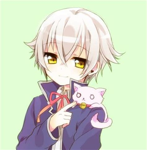 K Anime Neko by K Images Shiro Neko Wallpaper And Background Photos 33835236