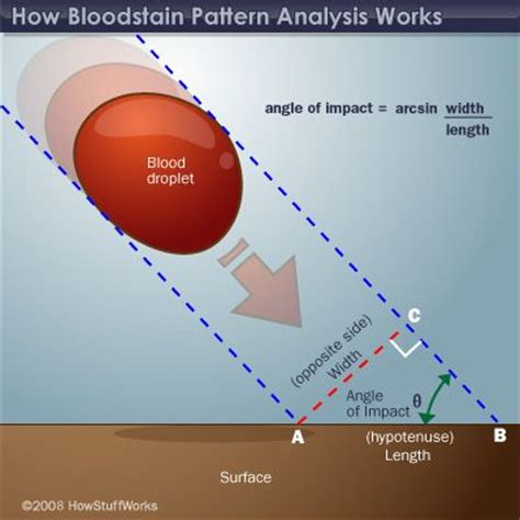 bloodstain pattern analysis reliability how bloodstain pattern analysis works shape blood and