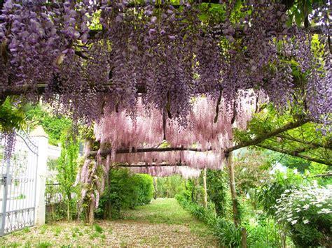 il giardino segreto il quot giardino segreto dell anima quot di tramonti e la