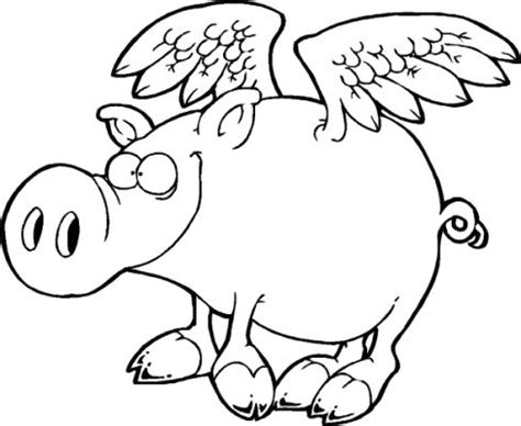 animal flying colouring pages