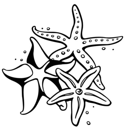 tattoo nightmares starfish starfish tattoo designs free