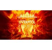 Liverpool Fc Liga Logo Bilder Foto 1024 X Pictures