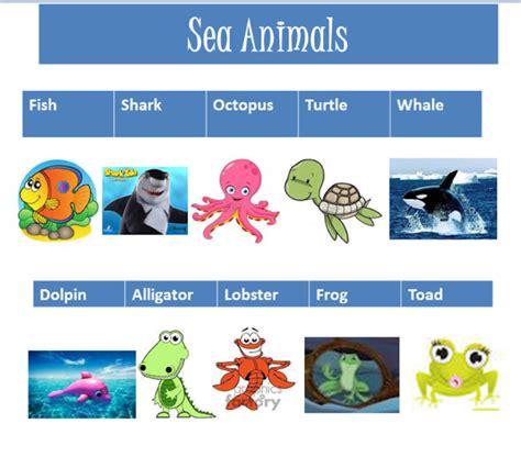 imagenes de animales marinos con sus nombres imagenes de animales acuaticos con sus nombres imagui