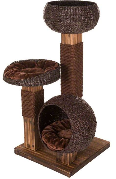 Modern Cat Tree scorched wood cat tree from zooplusuk affordable modern