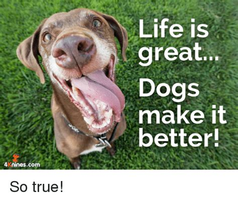 Life Is Great Meme - life is great dogs make it better 4kninescom so true