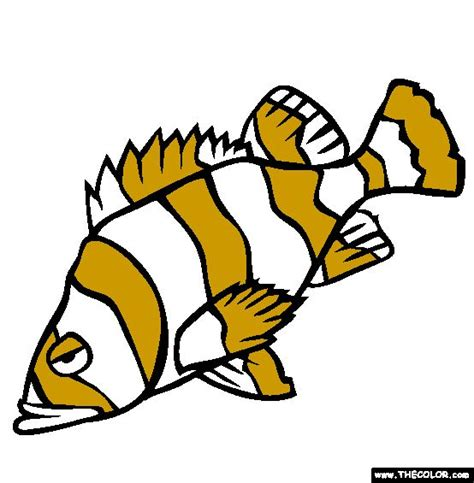coloring pages rockfish 56 best fused fish images on pinterest fish appliques