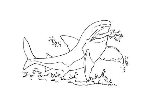 Coloriage 195 Dessiner Poisson Requin Dessin Colorier Requin Scie A Imprimer L
