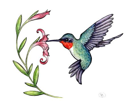free hummingbird clipart pictures clipartix 2 cliparting com