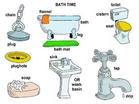 bathroom words bathroom vocabulary english vocabulary pinterest