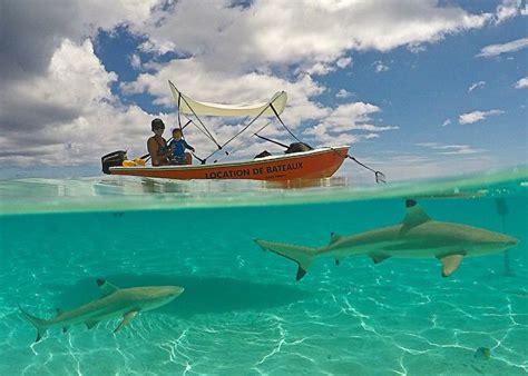 under boat camera how to shoot half underwater gopro photos gopro