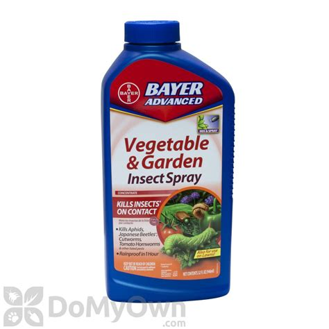 insecticide for vegetable garden bayer advanced vegetable and garden insect spray concentrate