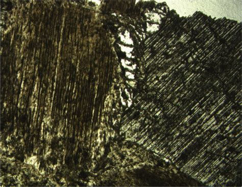 hibole in thin section figure f31 photomicrograph showing the image of two