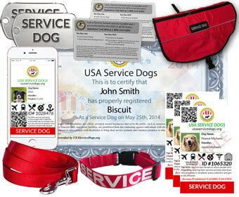 registering a as a service animal service registration usa service dogs