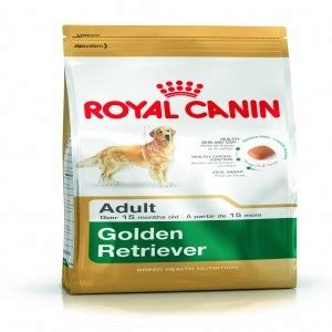 royal canin golden retriever puppy food royal canin golden retriever food 12kg