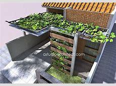 Desain pergola dari besi hollow dengan tanaman rambat ... Lanny Vines Home