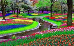 how to bring colour into your garden global garden