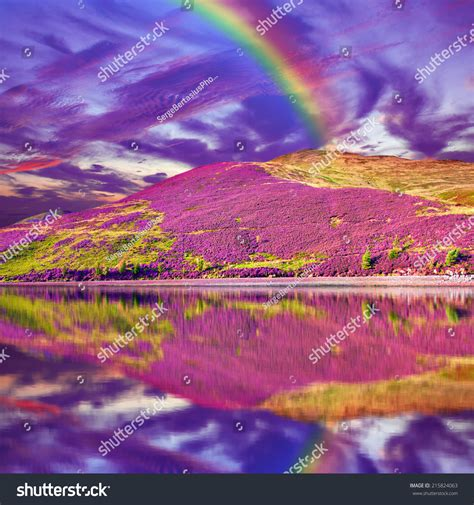 colorful hill colorful landscape scenery of rainbow hill slope