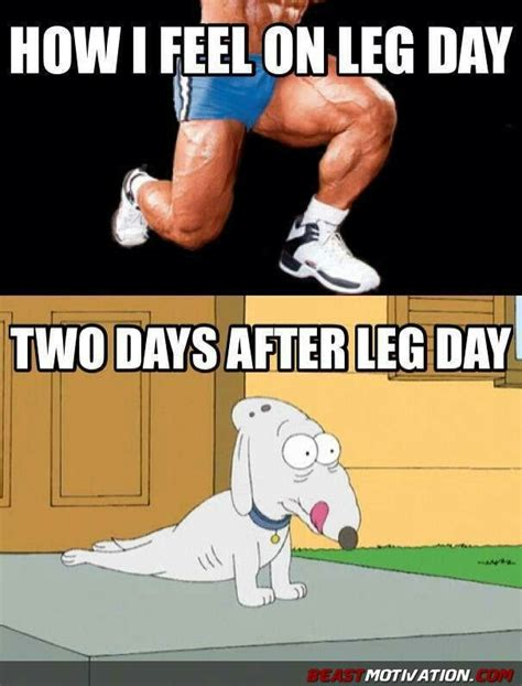 Leg Day Meme - 25 best ideas about leg day funny on pinterest work out