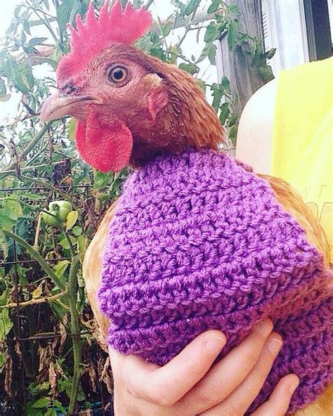 pattern chicken jumper crochet pattern crochet chicken sweater by