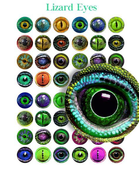printable animal eyes lizard eyes printable craft circles amphibian animal eye