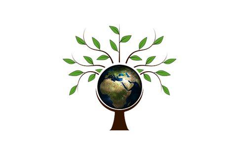 illustration gratuite arbre esth233tique log couronne