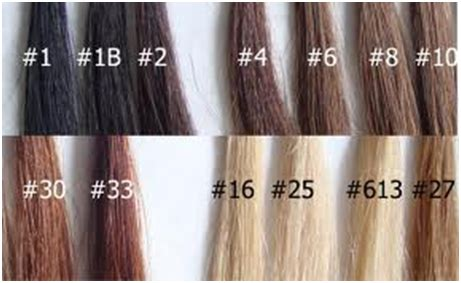 color 2 hair how to choose suitable hair extension healthcosmic a