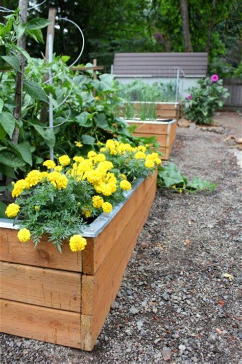 Pacific Northwest Vegetable Gardening Growing Vegetables In The Pacific Nw Gardening