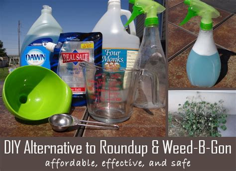DIY Alternative for Weed B Gone or RoundUp: Homemade