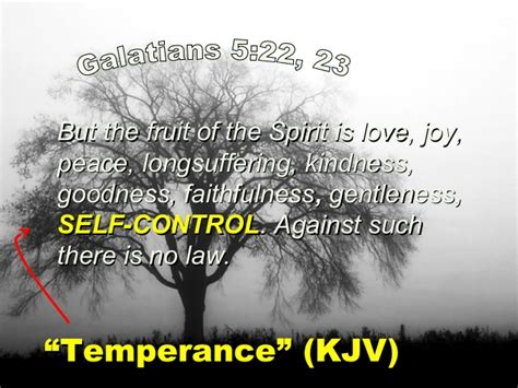 9 fruit of the spirit 9 fruit of the spirit self
