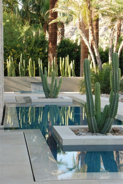 rock garden cafe palm springs pin by de cassia fernandes on cactus
