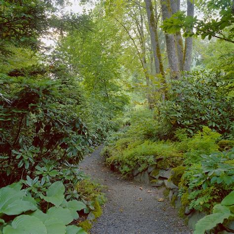 shade garden in the pacific northwest landscaping plans ideas pinterest