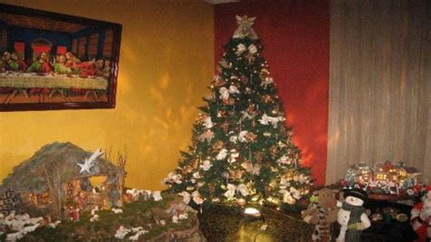 se acerca la navidad hoy armamos el arbolito y el pesebre