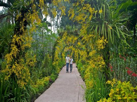 13 best botanical gardens in the world triphobo