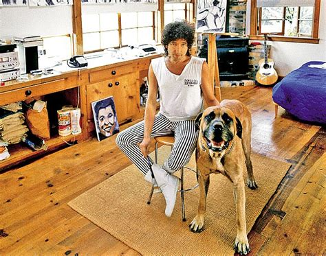 bob s house for dogs david bowie prince charles and ronnie wood can you match