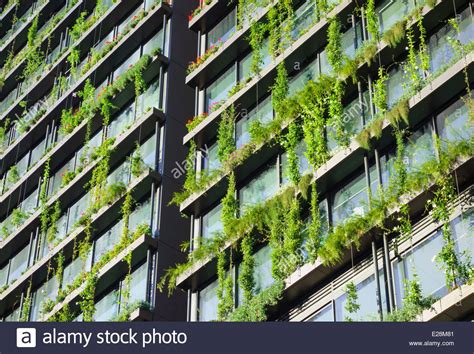 vertical garden hanging garden growing on a