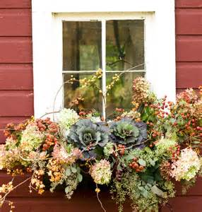 fall flowers for window boxes fall container gardens