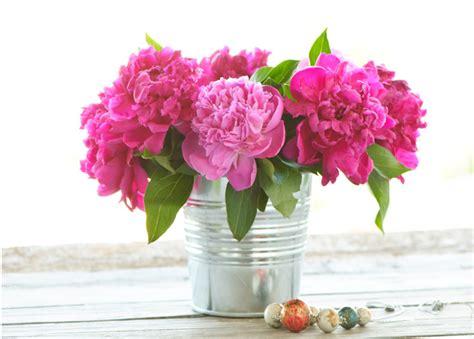 peony vase peonies bouquet in a vase wallpaper