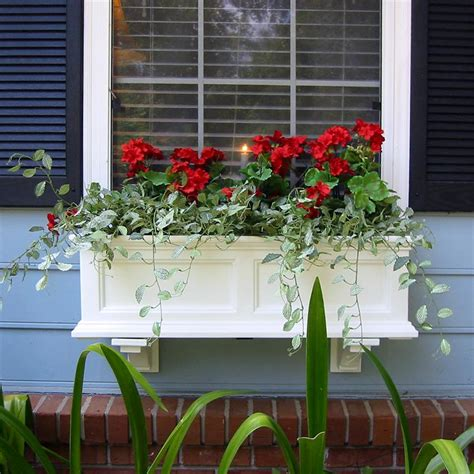 outdoor window box mayne 3 ft fairfield window planter box white with wall