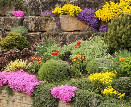 Garden Flowers And Plants Plants To Use In Rock Gardens Lovetoknow
