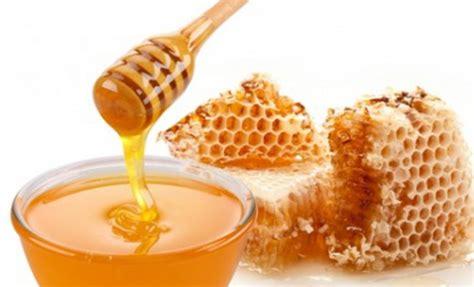 vosges le miel est 224 l honneur 224 la chambre d
